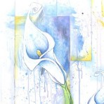 Calla Lilies and Squares