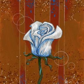 White Rose #1