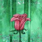 Pink Rose #1